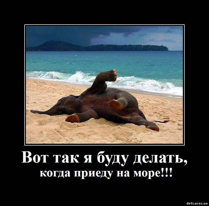 смешные картинки отдых на море